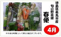 【先行予約】旬の新鮮な野菜便(春便)2021年4月~お届け!