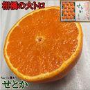 【先行受付・限定5箱】ちょっと傷あり『柑橘の大トロ』ハウスせとか15玉入