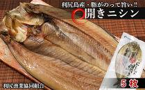 利尻島産開きニシン5枚<利尻漁業協同組合>