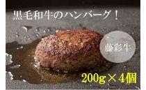 藤彩牛大判ハンバーグセット 200g×4個