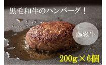 藤彩牛大判ハンバーグセット 200g×6個
