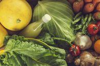 『定期便全12回』無農薬生姜500gと旬の野菜の詰め合わせ【土佐野菜】