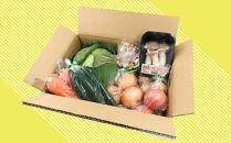 新鮮野菜セット〈8種〉