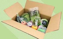 たっぷり!サラダ野菜セット〈10種〉