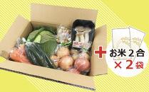 ≪お米入り≫新鮮野菜セット〈8種〉