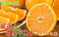 厳選!和歌山の濃厚デコポン 15~24玉(約5kg)