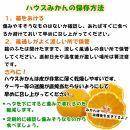 特撰品!和歌山有田の「ハウスみかん」【赤秀】2,5kg化粧箱入り(5月以降発送分)