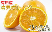 【厳選】有田産清見オレンジ約7kg(サイズおまかせ・秀品)
