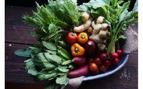 イナカデリコのヘルシー高知野菜セット(旬野菜5-7種+玄米グラノーラ)