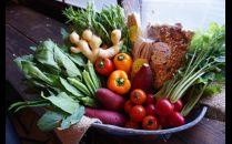【全6回】イナカデリコのヘルシー高知野菜セット(旬野菜5~7種+グラノーラorスコーン)