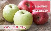 フルーツ王国余市産「ふじ・王林」ミックス5kg【⼭本観光果樹園】