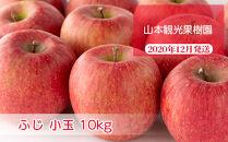 フルーツ王国余市産「ふじ小玉」10kg【⼭本観光果樹園】