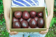 奄美大島産パッションフルーツ家庭用1.5kg