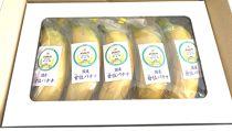 国産温泉甘位バナナ 5本