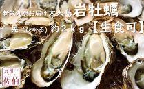 新栄丸がお届け大入島岩牡蠣・晃(ひかる)約2kg【生食可】