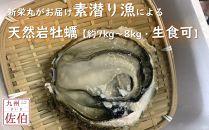 新栄丸がお届け素潜り漁による「天然岩牡蠣」【約7kg~8kg】【生食可】