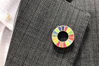 【ポイント交換専用】【阿蘇小国杉】木製SDGsバッジ 4個セット