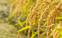 【お米の定期便】ホクレンゆめぴりか36kg(玄米6kg×全6回)