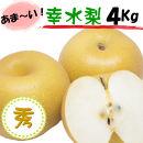 果汁たっぷり 和歌山の梨!『幸水』 秀品 4kg 8月から順次発送
