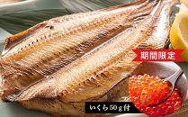 【新型コロナ支援】いくら50g付き!大きい開きほっけ10枚セット<大川商店>