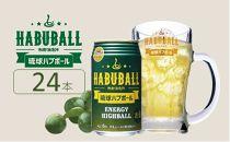 琉球ハブボール350ml24缶セット