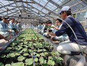 東北農林専門職大学(仮称)キャンパス整備事業(返礼品なし) BD19