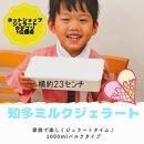 【お中元用】お家ジェラート(知多ミルク1000ml×1,ピスタチオ80ml,マンゴー80ml)
