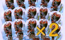 砕氷戦士ガリヤ―パッケージ ほたて貝ひも 30袋