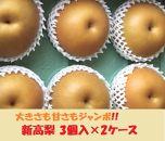 大きさも甘さもジャンボで大満足!新高梨3個入×2ケース