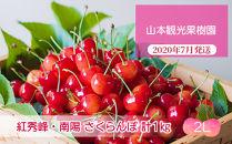 フルーツ王国余市産「紅秀峰」・「南陽」2Lサイズ各500g合計1kg【⼭本観光果樹園】