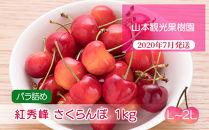 フルーツ王国余市産「紅秀峰」【L~2Lサイズ】バラ詰め1kg【⼭本観光果樹園】