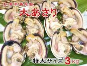 【愛知県産】大あさり半割(冷凍)特大サイズ3キロ(8~9個入り)