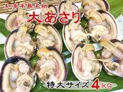 【愛知県産】大あさり半割(冷凍)特大サイズ4キロ(10~12個入り)