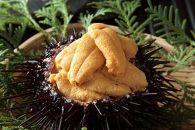 殻付きキタムラサキウニ3kg