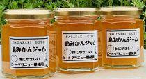 体に優しいビートグラニュー糖で作った☆島ミカンジャム☆3本