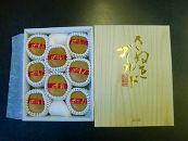 【贈答用】大玉厳選!さぬきゴールドキウイ化粧箱約1.4kg