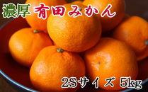 【濃厚】紀州有田みかん約5kg(2Sサイズ・赤秀品)