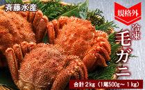 AM009規格外!毛がに2㎏セット(1尾約500g~1kg大サイズ)【斉藤水産】