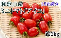 【1月出荷分】和歌山産ミニトマト「アイコトマト」約2kg(S・Mサイズおまかせ)