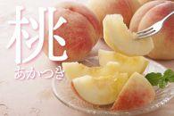 果樹園からの恵み フレッシュ 桃(ピーチ)
