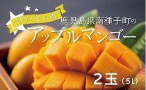 アップルマンゴー 当社直営農園で生産(5L・2玉)