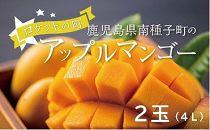 アップルマンゴー 当社直営農園で生産(4L・2玉)