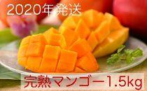 【数量限定】のはらファーム完熟マンゴー1.5kg(4玉)