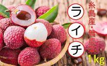 ★期間限定★糸島産 無農薬生ライチ(約1キログラム)