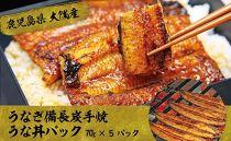 【鹿児島県大隅産】うなぎ備長炭手焼うな丼パック5袋入り