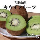 【まごころ手選別】和歌山産 キウイフルーツ 約1.2kg