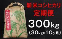 TA021室戸産新米コシヒカリ計300kg定期便