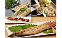【定期便】鹿児島県大隅産 千歳鰻の白焼鰻「大」2尾×3回