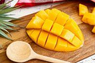 【奄美マンゴー優品2kg】樹上完熟、農家直送!とろける甘さの黄金果肉(※日時指定不可、同梱不可、クール便)