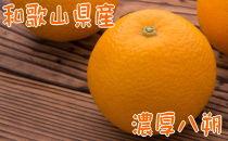 【冬の美味】【農家直送】濃厚八朔(ご家庭用)4kg